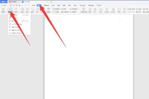 wps最后一页空白页怎么删除第2步