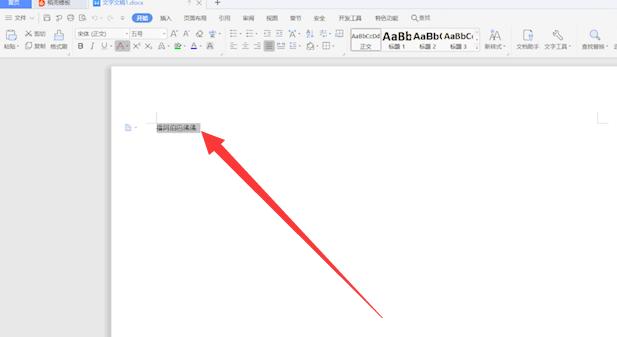 WPS带格式整页复制