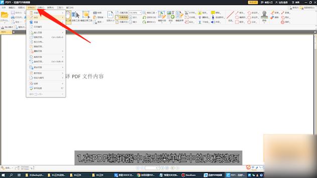 如何设置PDF全屏动画第1步