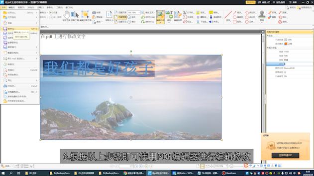 如何对pdf图片进行编辑第6步